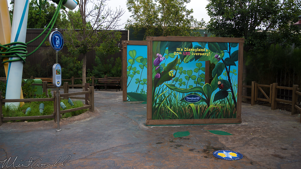Disneyland Resort, Disneyland60, Disneyland, Disney California Adventure, Bug, Land, Photo, Opportunity, Op
