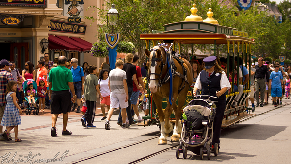 Disneyland Resort, Disneyland60, Disneyland, Main Street U.S.A., Horse, Drawn, Street, Cars