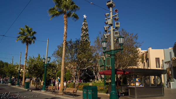 Disneyland Resort, Disneyland60, Christmas, Time, Disney California Adventure, Buena, Vista, Street, Tree