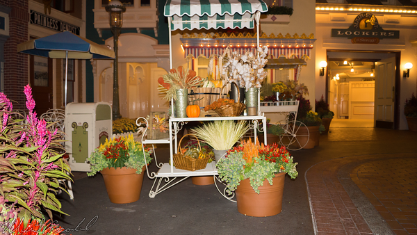 Disneyland Resort, Disneyland60, Halloween, Time, Disneyland, Main Street U.S.A., Center, Street, Flower, Market, Cart, Display, Autumn