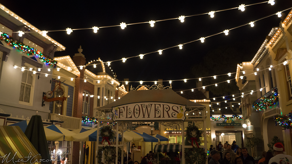Disneyland Resort, Disneyland60, Christmas, Time, Disneyland, Main Street U.S.A., Cross, Street, Flower, Market