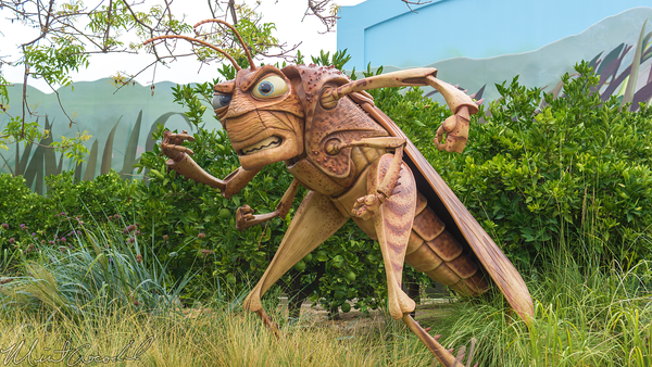 Disneyland Resort, Disneyland60, Disney California Adventure, tough, to, be, a, bug