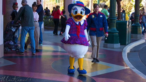 Disneyland Resort, Disneyland60, Disney California Adventure, Buena, Vista, Street, Daisy, Duck