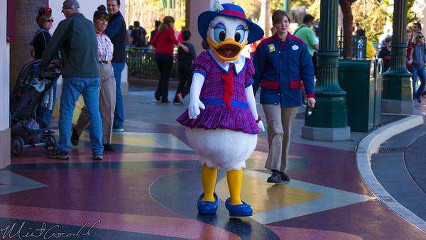 Disneyland Resort, Disneyland60, Disney California Adventure, Buena, Vista, Street, Daisy, Duck