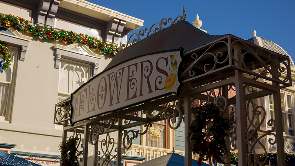 Disneyland Resort, Disneyland60, Christmas, Time, Disneyland, Main Street U.S.A., Flower, Market, Flowers, Center, Street