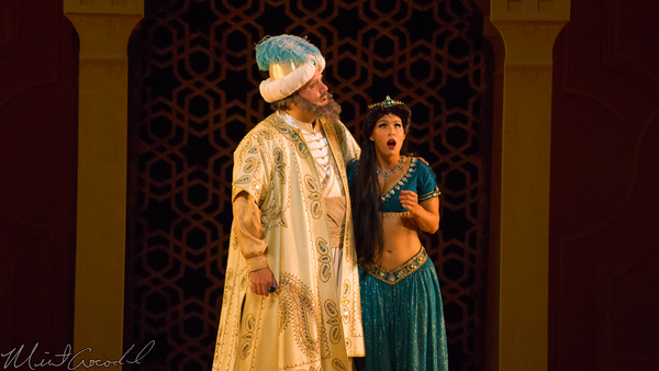 Disneyland Resort, Disneyland60, Disneyland, Disney California Adventure, David, Aldrete, Aladdin, Musical, Spectacular, Sultan, Narrator