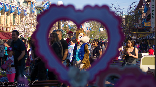 Disneyland Resort, Disneyland60, Disneyland, Main Street U.S.A., Town, Square, Valentine, Decoration, Decor, Flower