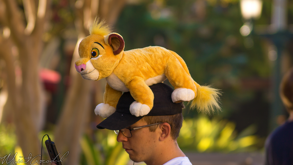 Disneyland Resort, Disneyland60, Halloween, Time, Disney California Adventure, Buena, Vista, Street, Simba, Plush