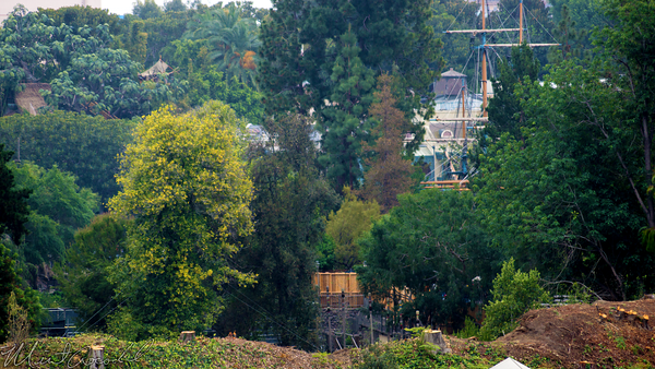 Disneyland Resort, Disneyland, Mickey, Friends, Parking, Structure, Frontierland, Star, Wars, Construction, Backstage, Critter, Country